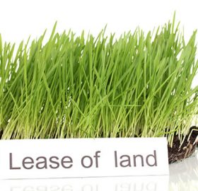 Lease in Thailand